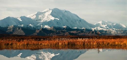 Sicht vom Reflection Pond aus: Denali im Herbst