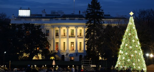 White House with National Christmas Tree (Bildquelle: Destination DC)