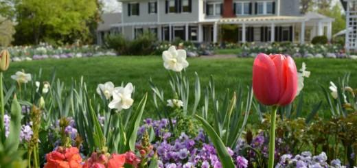 Lewis Ginter Bloemendaal House Richmond, Foto Capital Region USA