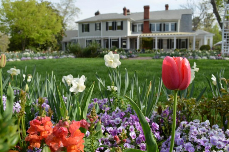 Zur 'Historic Garden Week' in Virginia