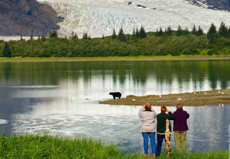 Die Wildnis hinter Anchorage