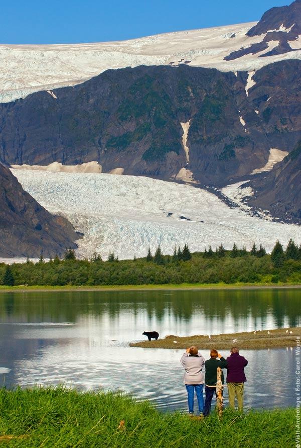 Ganz nah bei den Bären im Nationalpark, Foto Carroll Wayde