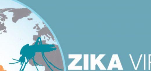 ZIKA Virus in USA (image: CDC.gov)