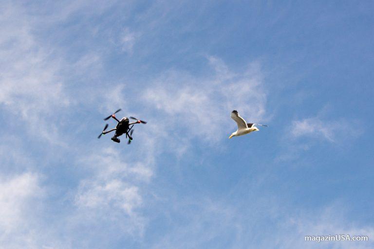 Drohnen mitnehmen nach USA – was ist zu beachten?