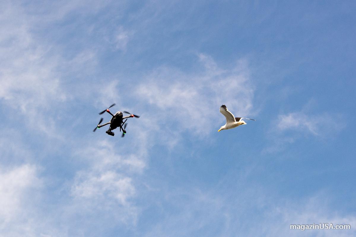 Drohne mit in USA Urlaub nehmen