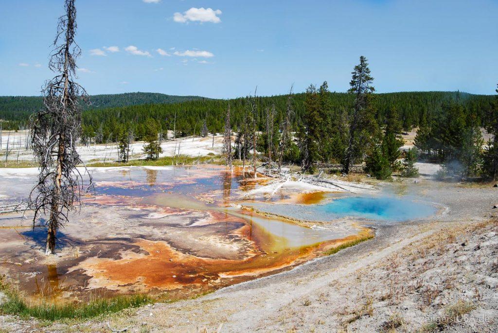Yellowstone Schwefel Pools und Ablagerungen