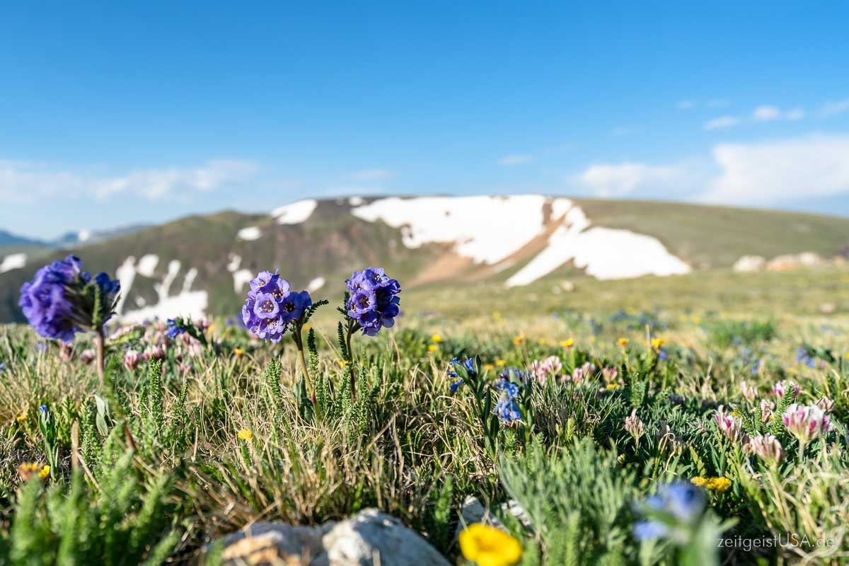 Wandern und Outdoor Life in Boulder's Umgebung
