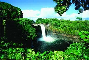 Die Rainbow Falls befinden sich mitten im Zentrum von Hilo (Big Island Visitors Bureau)