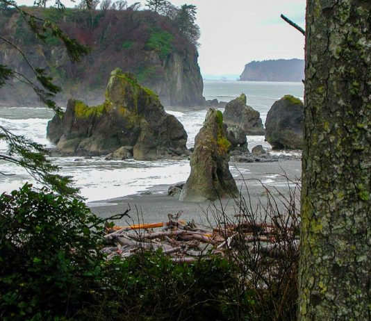 Ruby Beach im Olympic Nationalpark, Washington State, im Nordwesten der USA