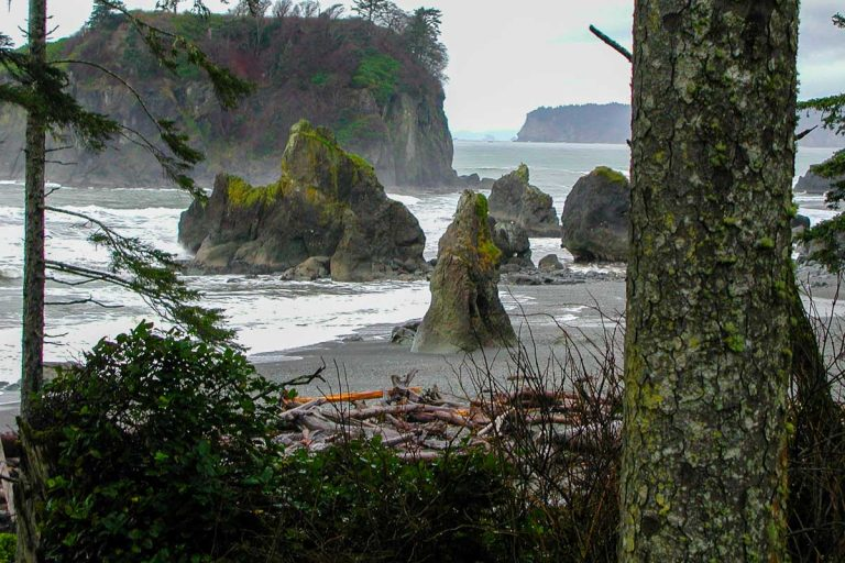Olympic Nationalpark im Staat Washington, USA