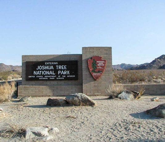 Joshua Tree Nationalpark, Kalifornien