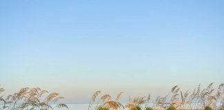 Florida's ruhige Strände an der Westküste
